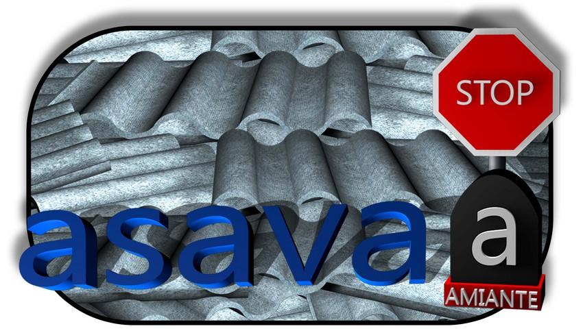 ASAVA_Logo_Plus_1_Toles_Logo_sort_cadre_1a